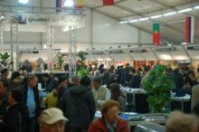 アルバ国際トリュフフェア会場の内部